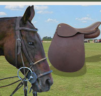 Polo equipment - horse